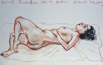 Liegende Akt,  32X50cm, Zeichenstift auf Papier