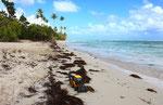 Guadeloupe, Caribbean