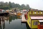 Vancouver island, 2018