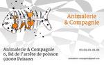 """Cartes de visite réalisées > pour une animalerie - Demande client : illustration """"en tradi"""" et couleurs mixtes - Technique : numérique sous Photoshop _ Cloé Perrotin"""