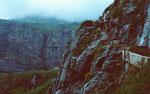 Drahtseil gesichertes Fels- und Schrofenband zwischen Ober- und Unterbärgli