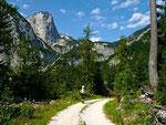Breiter Forst- und Güterweg zwischen Zimitzalm und Schwaiberalm mit herrlichem Blick auf den wildromantischen Talschluss