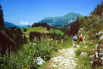 Abstiegsweg von der Geltenhütte zum Lauenensee