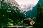 Der Taleinschnitt des Unteren Grindelwaldgleschers mit den Fiescherhörnern im Hintergrund