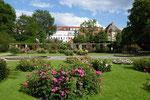 Rosengarten im Fuerther Stadtpark (DMC TZ71)
