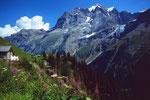 Alp Obersteinberg. ImHintergrund Jungfraumassiv