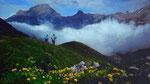 Abstieg vom Ammertenpass zur Engstligenalp bei einfallendem, dichtem Nebel