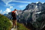 Das steil aufragende, wuchtige Massiv der Jungfrau mit einem Höhenunterschied zwischen Trachselauenen und dem Gipfel von 3100 m.