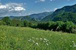 Ennstaler Alpen vom Hoehenruecken