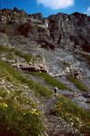 Am Weg Hohbalmen - Oberbärgli