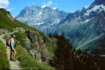 Aussicht vom Höhenweg Obersteinberg - Oberhornsee auf Jungfraumassiv, Rottalgletscher, Ebnefluh und Mittaghorn