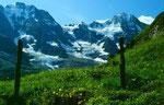 Nach dem Weidezaun unterhalb des Tanzbödeli beginnt der Höhenweg nach Obersteinberg