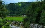 Durch den Bergwald und die grünen Wiesenparzellen verlief unser Anstieg zum Klausberg