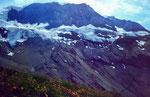 Wildstrubel-Nordflanke rechts vom Ammertengrat mit kleinen eingelagerten Gletschern