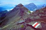 Auf der Ammertenspitz (2443 m). Hinten der Großlohner.