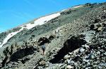 Der Schlussanstieg zum 30ß68 m hohen Gipfel des Piz Buin