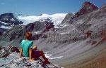 Wildstrubelgletscher von der Südseite der Roten Totzlücke