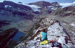 Blick von der Südseite der Roten Totzlücke ins Lämmerental und zum Lämmerengletscher
