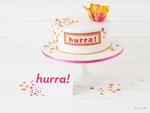 Geburtstagstorte Hurra mit Papageientulpe