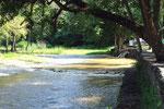 El Río Sarare