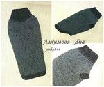 свитер для таксы
