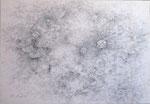 「あさつゆ」   シャープペンシル・和紙  W22.7×H15.8cm 個人蔵