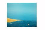 Evasion (Acrylique sur toile - 60 x 73 )