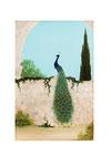 Paon (Acrylique  sur toile - 24 x 19 )