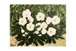 Hellebores (Acrylique sur toile - 45 x 60 )