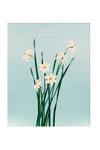 Narcisses (Acrylique sur toile - 42 x 34 )