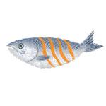 食品イラスト/鮭