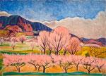 杏風景 1959年 H53×73 P20 キャンヴァス、油彩