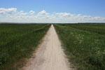 am Bodden entlang: der Radweg Born - Ahrenshoop und weiter
