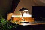 Pilz Lampe Holz