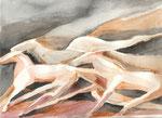 Pferde, Aquarell, Stift, 30 x 40xm