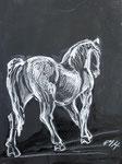 Pferd6, Kreide, 40 x 30 cm