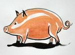 Schwein2, Aquarell, 13 x 15 cm