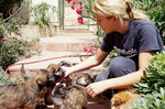 Tamie bei Züchterin in Spanien