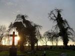 """Hohenkirchen-Friedhof-""""Hänsel und Gretel und die böse Hexe"""""""