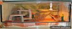 Wüsten-/Steppenterrarium 100*60*40cm (L*T*H)