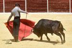 Curro Padilla