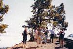 Diploma Tres Estaciones año 2005 La Palma
