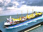Combi Dock III mit Viermastbark Peking