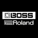 Roland Music, Gitarren und Bass Amps inklusiv Effekte