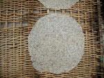 Reisplatte mit Tapioka und Kokos