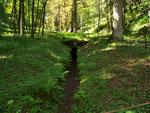 Alter Bergwerksschacht zwischen Elbingerode und Wernigerode