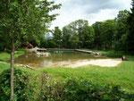 Naturbad in Elbingerode