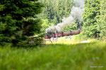 Harzer Schmalspurbahn bei Drei Annen Hohne