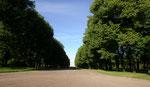 Le parc de Tsarkoïe Selo (village de tsar)
