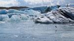Icebergs du JokulSarlon